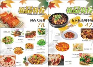 新品推薦菜譜圖片