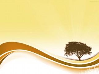 树背景图片高清JPG下载